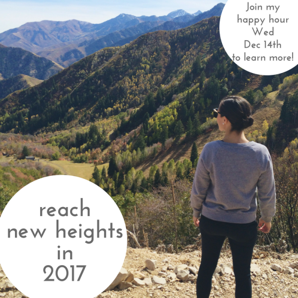 reach-new-heights-in-2017